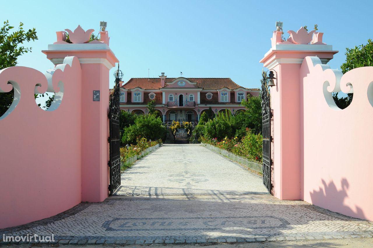 Quinta de 102 ha em Palmela com moradia, piscina, vinha, pinhal, pomar