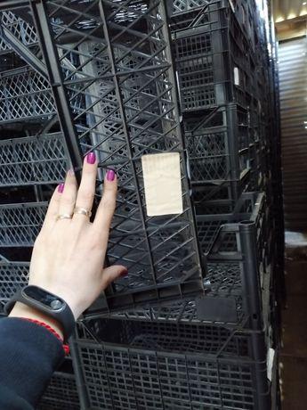 Ящик пластиковый