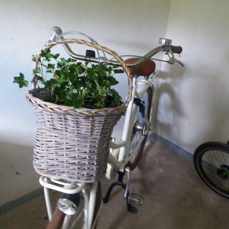 Rower Cortina u5