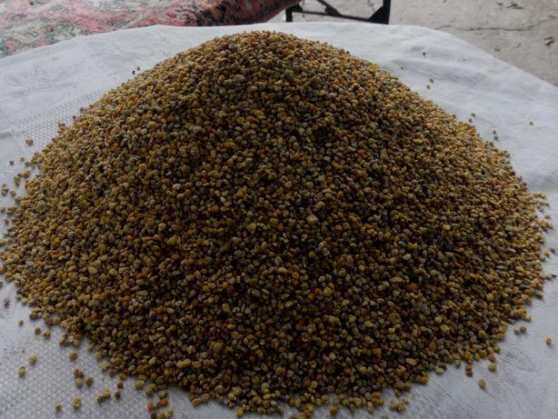 Пилок бджолиний(Пилок квітковий) Пыльца пчелиная (цветочная ) 2021