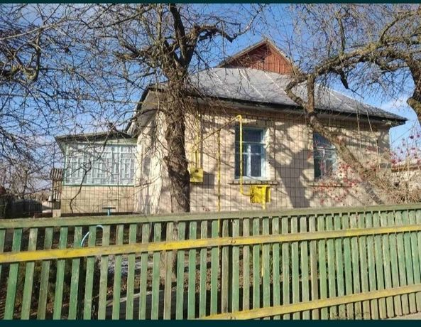Будинок в селі Демидівка