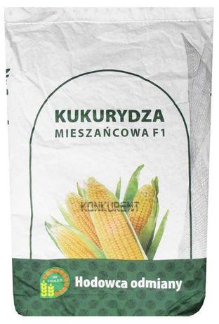 Kukurydza nasienna KONKURENT Fao 230-240
