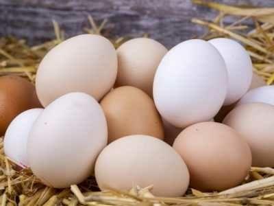 Jaja wiejskie z wolnego wybiegu!!!