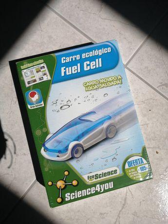 Carro ecológico fuel cell