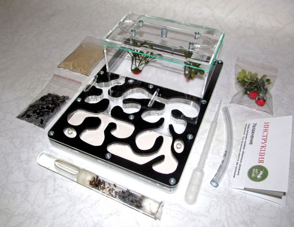Муравьиная ферма (формикарий) «Anthouse» + муравьи-жнецы (черная)