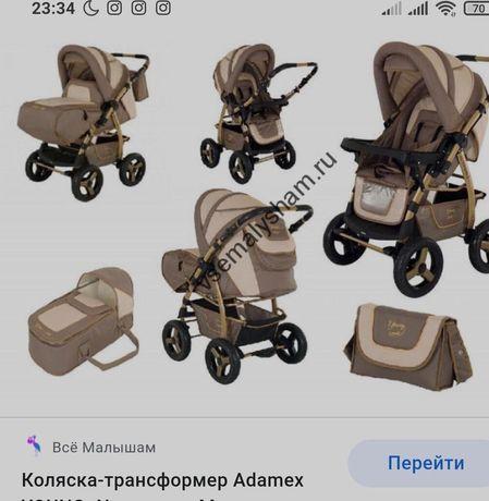 Каляска  Adamex Young