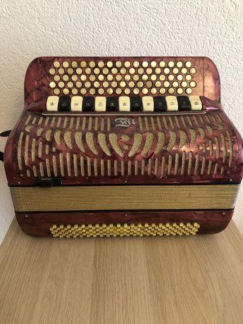 Acordeao tell musica bronze