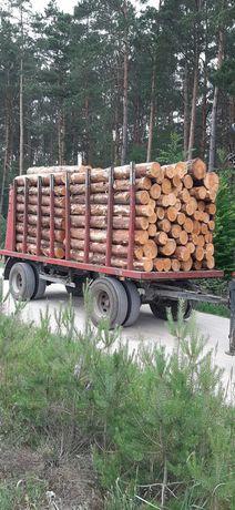 Przyczepa Mhs 2008rok do drewna drzewa lasu