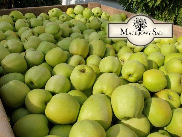 Jabłka - różne odmiany - prosto od producenta!