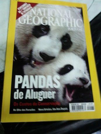 National Geographic -Tema: Pandas de aluguer (portes incluídos)