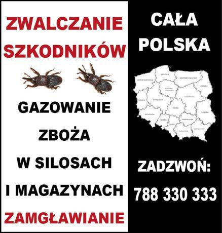 Gazowanie zboża, pustych silosów magazynów dezynsekcja cała Polska