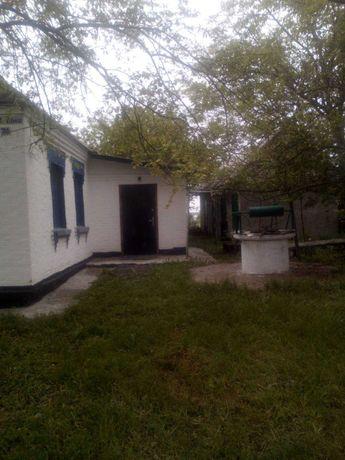Продается дом. Киевская область, Мироновский р-н, с.Пустовиты