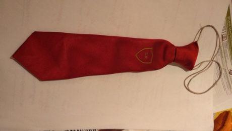 мальчику школьная форма бордовый галстук британия