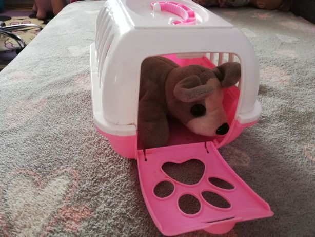 Piesek w transporterze