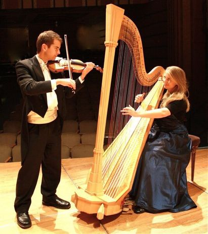 Violinista todos serviços profissionais