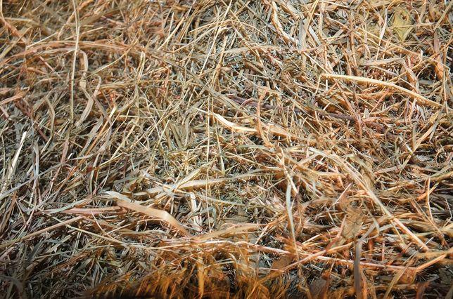 Siano z wiejskiej łąki - w workach
