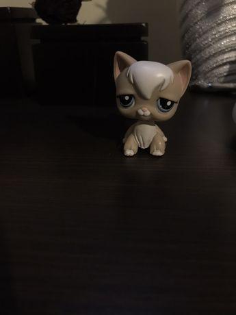 Figurka Littlest Petshop kot