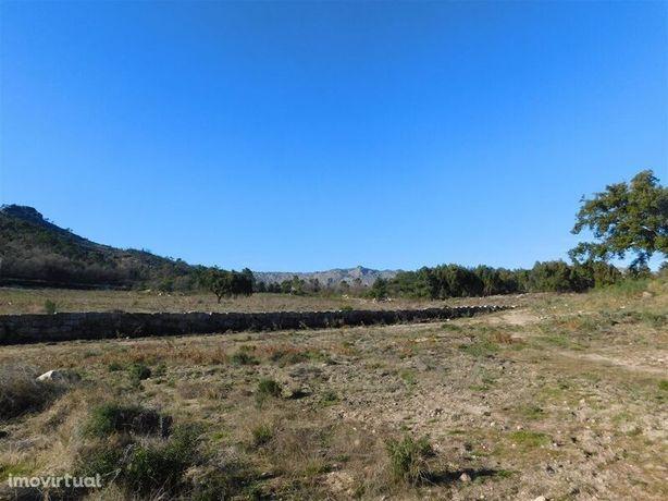 Terreno Agrícola Castelo Novo Fundão