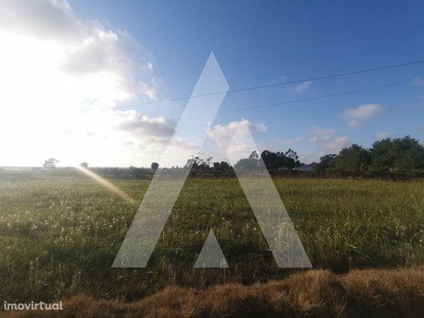 Terreno com capacidade construtiva, para 5 / 8 moradias, ...