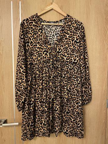 Sukienka w panterke.