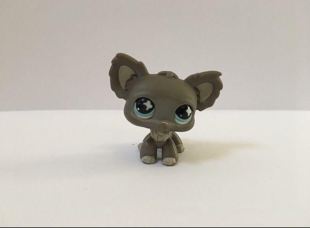 LPS Littlest Pet Shop - figurka koala