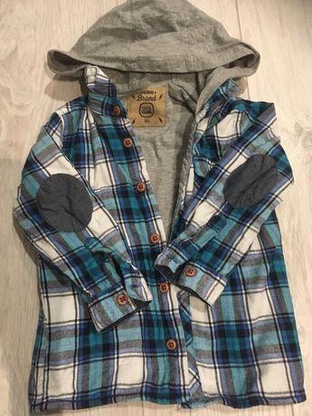 Koszulo bluza cool club