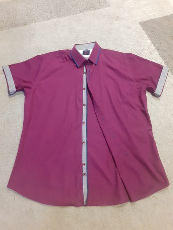 Koszula męska fioletowa