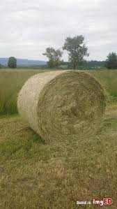 Siano polne z sianych łąk transport