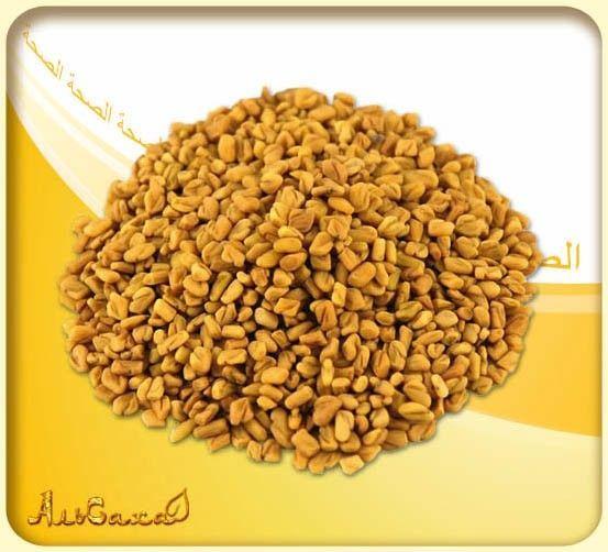 Хельбы Желтый Чай Хильба или Пажитник из Египта Киев - изображение 1