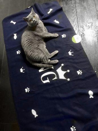 Nowy Koc dla kota psa KING granatowy kocyk pupila legowisko
