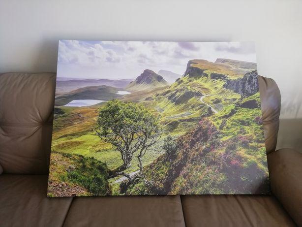 Sprzedam obraz 113x85 cm