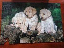 puzzle 160 elementów pieski brak jednej sztuki