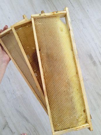 Рамки для ульев (145) СУШЬ пчелиная