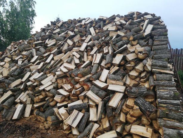 Drewno drzewo sosna dąb buk brzoza