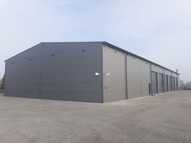 Konstrukcja stalowa 20x49x6m HALA stalowa Producent
