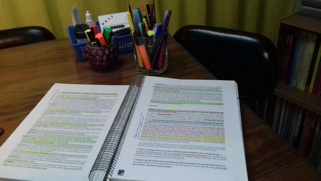 Explicações - Português & Inglês