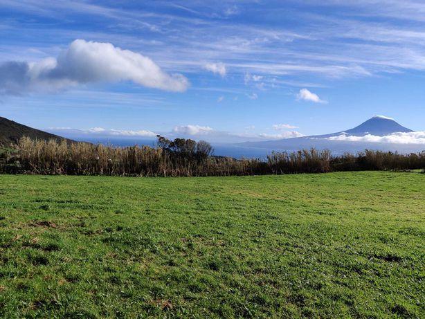Terreno ESPETÁCULAR nos Açores