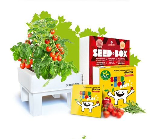 Kit Sementeira Infantil SEAD BOX KIDS