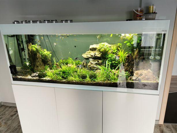 Akwarium Aquael Glossy 150 MEGA ZESTAW