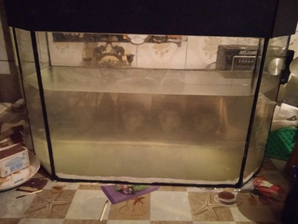 Продам аквариум на 32 литра 500 рублей