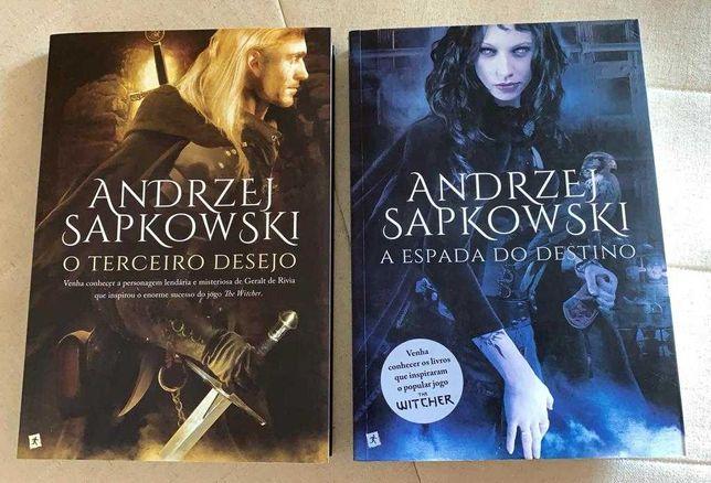 Livros 1 e 2 The Witcher - O Terceiro Desejo e A Espada do Destino