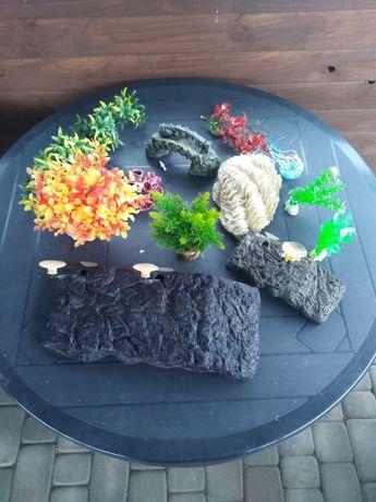 Ozdoby sztuczne do akwarium i terarium podesty sztuczne rośliny muszle