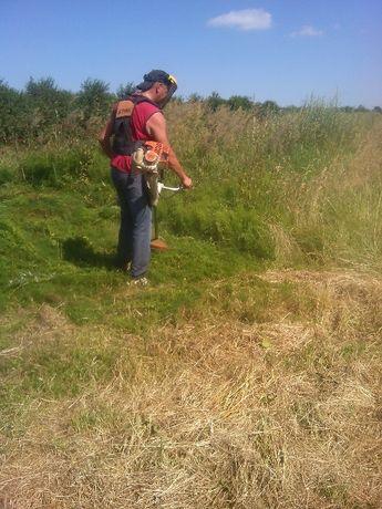 Sprzątanie działek. Pielęgnacja ogrodów,koszenie trawy, wycinka drzew