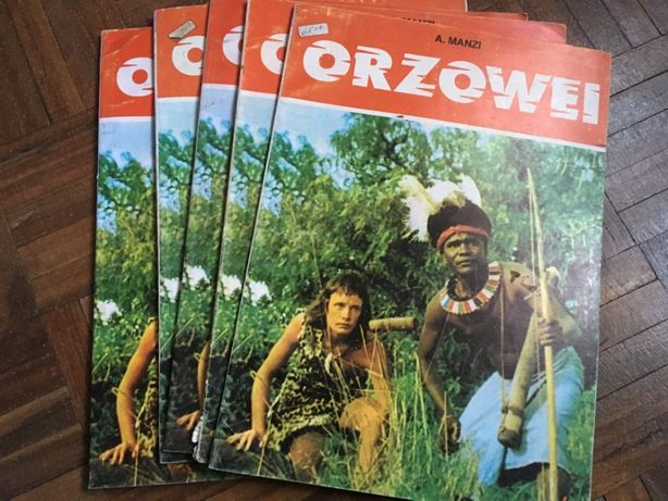 Orzowei DISVENDA - Livro