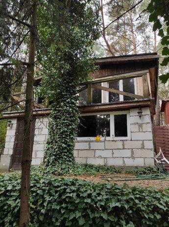 Działka rekreacyjna 20 km od Warszawy Zalesie k. Pustelnika