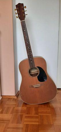 Gitara akustyczna Rosario MDS 6661