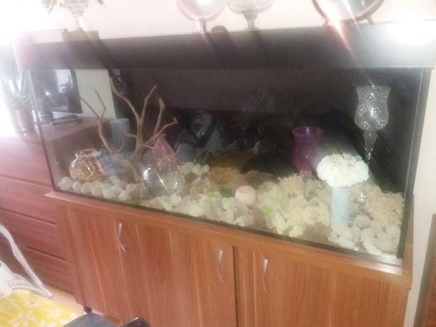 Akwarium pojemność 460 litrow