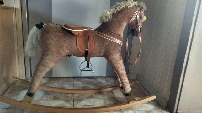 Koń, konik na biegunach