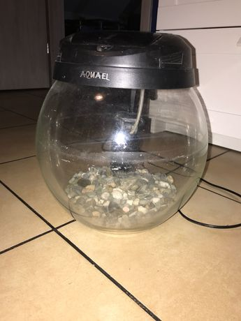 Akwarium kul Aquael