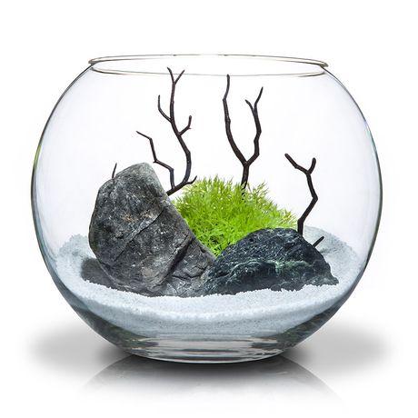 Круглый аквариум с дикорациями 5 литров